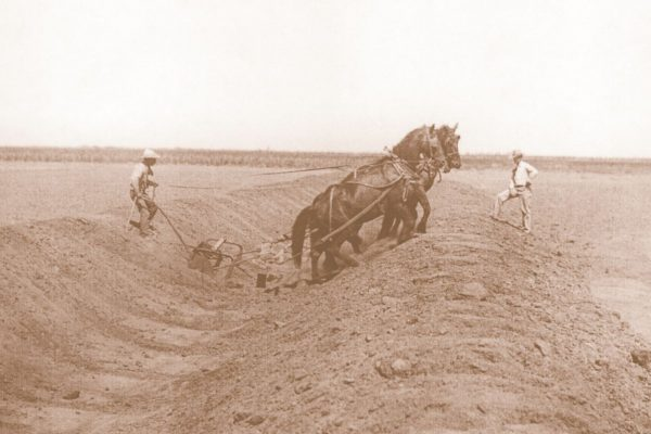 Horseteam Digging in Ditch